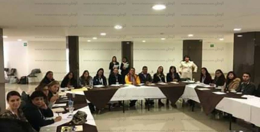 الاتحاد الدولي للإعاقات الذهنية ينظم ورشة عمل بمشاركة أمل مبدي
